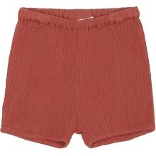 Soft Gallery Cinnabar Pip Bloomers