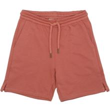 Soft Gallery Baked Clay Alisdair Shorts
