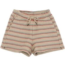 Soft Gallery Mojave Desert AOP Wavy Baby Alisdair Shorts
