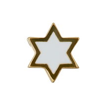 Design Letters Star Charm GOLD Plated White