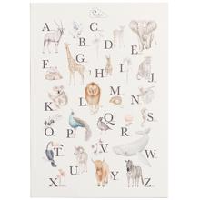 Cam Cam Alphabet Poster English