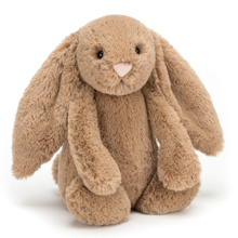 Jellycat Bashful Biscuit Bunny 31cm