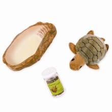 Our Generation Doll Accessories - Pet Turtle