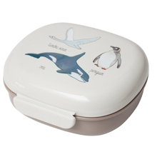 Sebra Lunch Box Arctic Animals