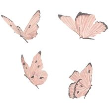 That's Mine Wall Stories Butterflies Dusty Rose