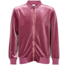 The New Imelda Bomber Renaissance Rose